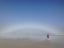 sta fogbow